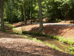 Banks along stream by Wade Worthen