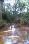 Furman stream