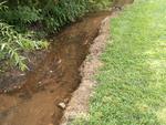 Herbicide on waterways