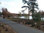 Walkway by the Furman Lake